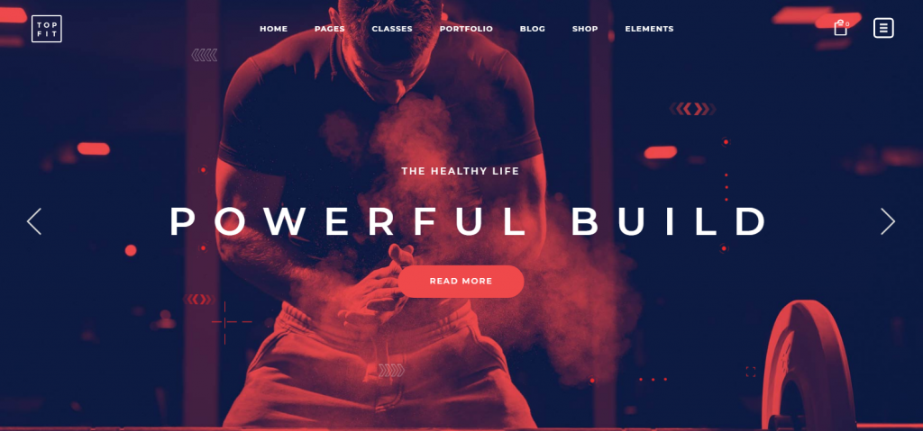 WordPress Themes for Health Care Center